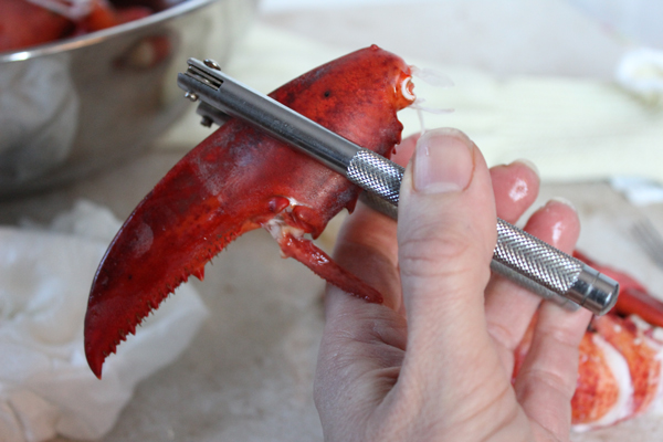 Cracking-Lobster-Claw