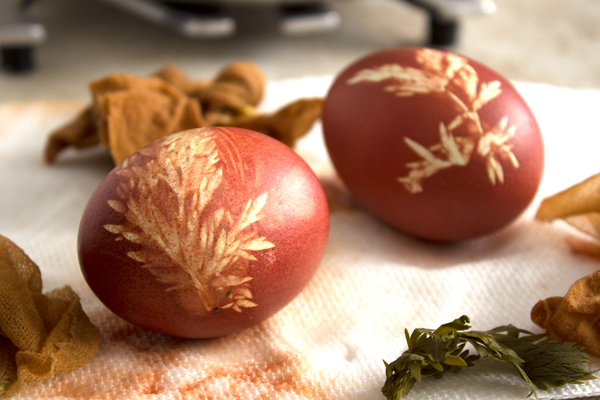 Onion-Dyed-Eggs3
