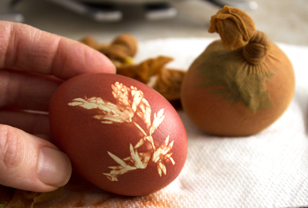 Unwrapped-Onion-Dyed-Eggs