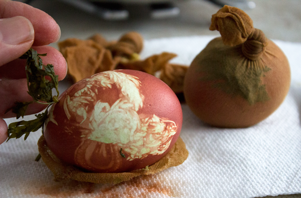 Unwrapping-Onion-Dyed-Eggs