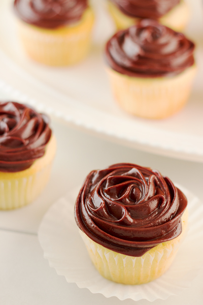 Chocolate Frosted Vanilla Cupcakes